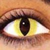 ojo con lentilla de ojo de gato