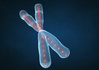 diagnostico_genetico