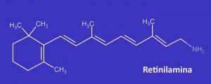 Imagen que muestra la composición de la Retinilamina
