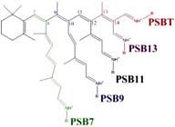 dibujo de un enlace químico