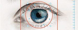 imagen de un ojo rodeado por un círculo naranja